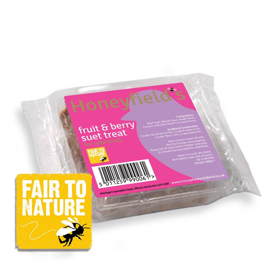 Honeyfield's Suet Treat - Fruity and Berry