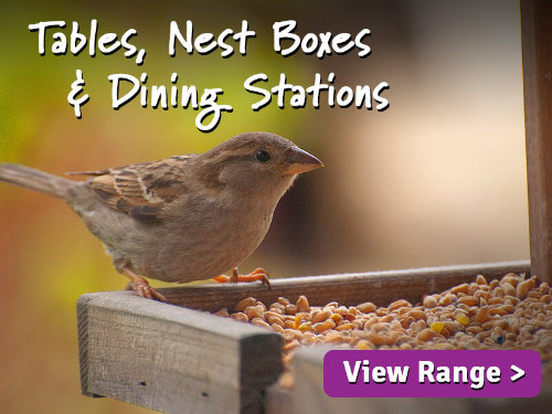 Wild Bird Tables Nest Boxes