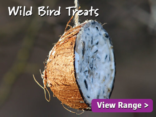 Wild Bird Treats